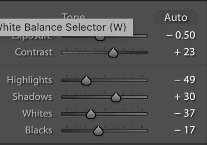 Screenshot of the basic panel in Lightroom.