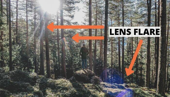 Person standing in the forest with arrows pointing out lens flare.
