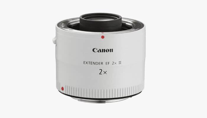 Canon 2x teleconverter.