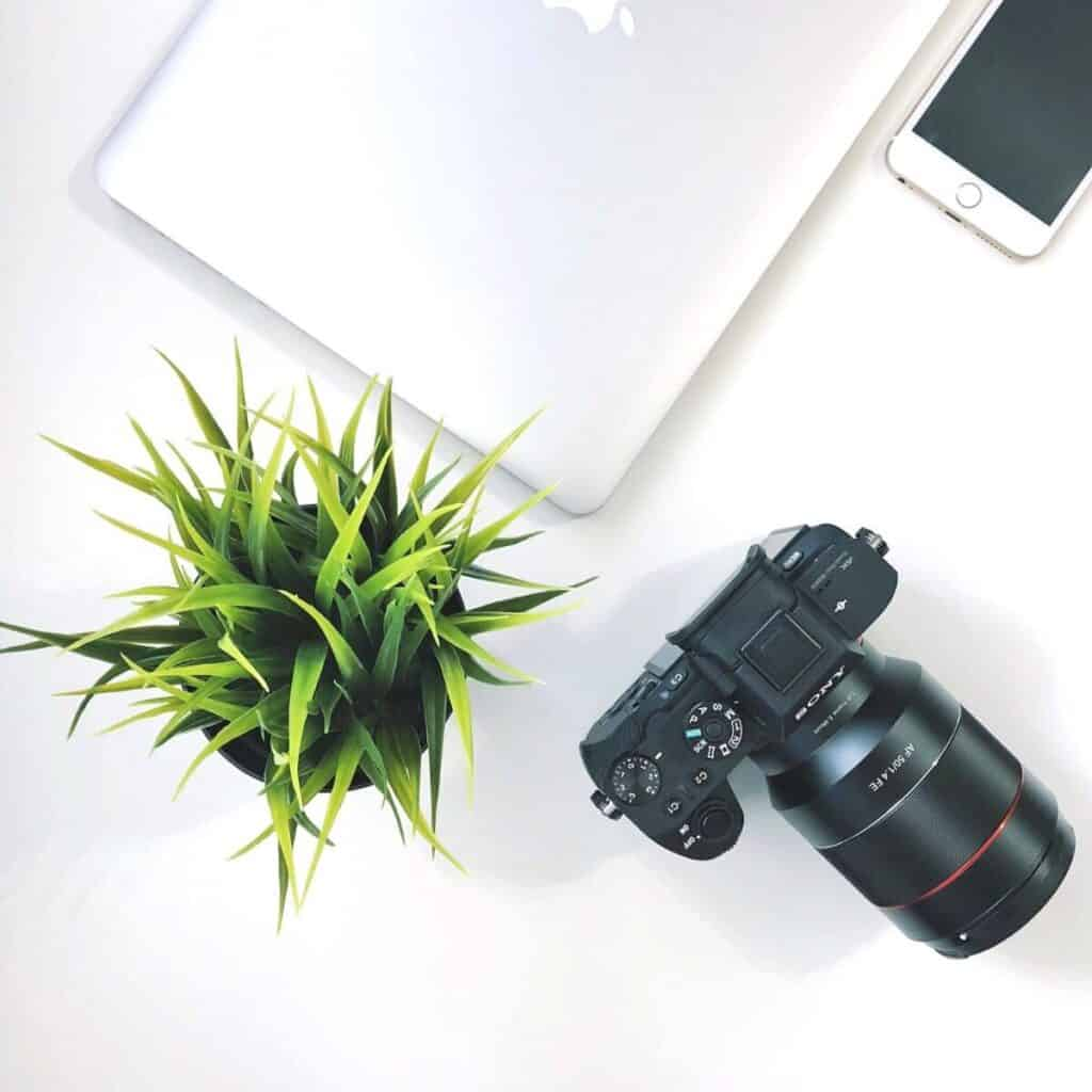 Flatlay of a camera, plant, laptop, and phone.