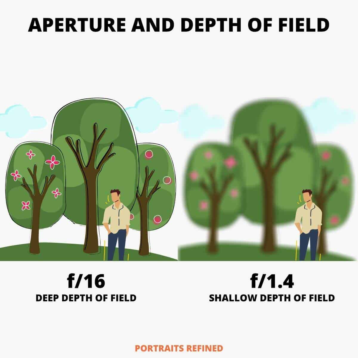 Comparison of a deep depth of field versus a shallow depth of field.