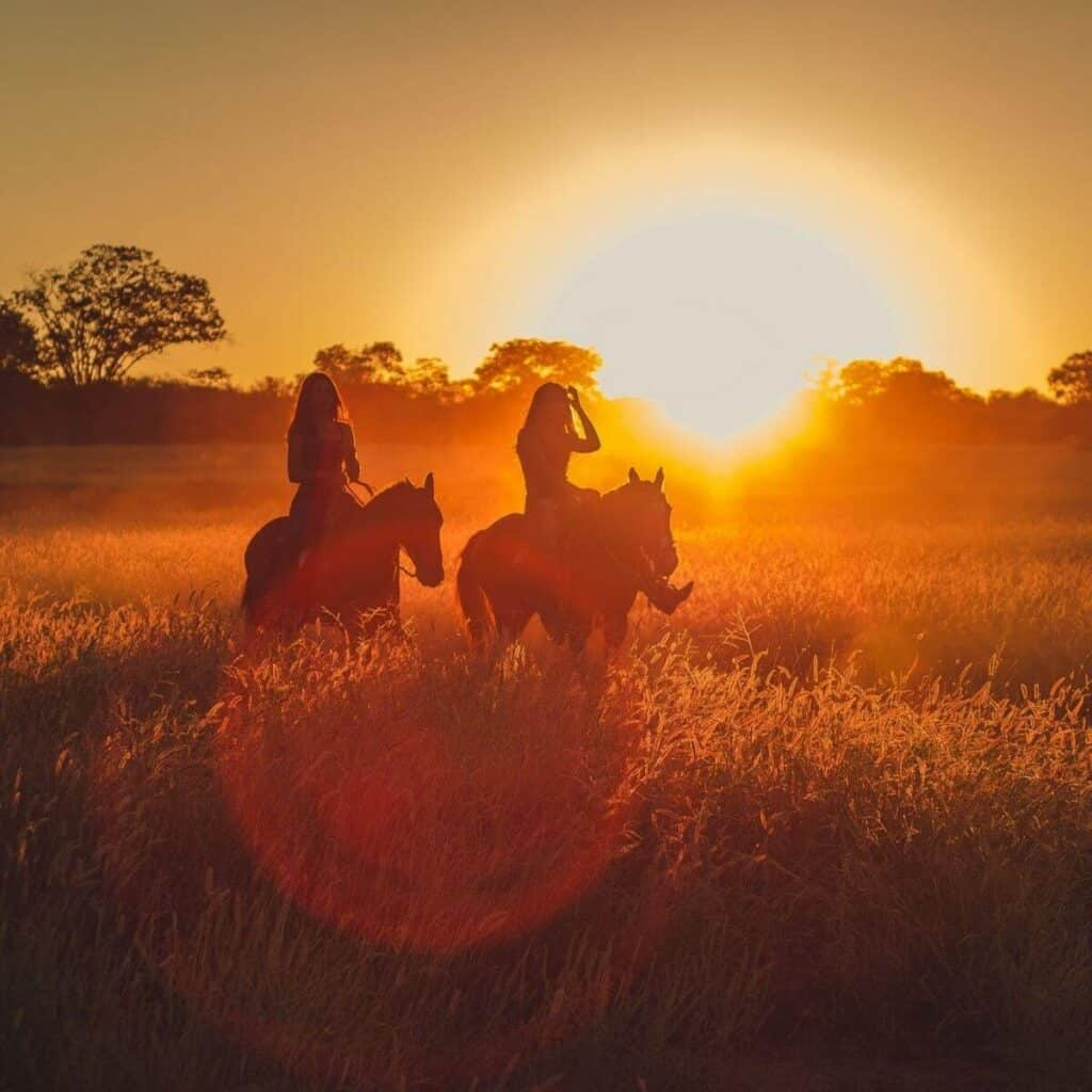 Silhouette of two people riding horses during a sunset.
