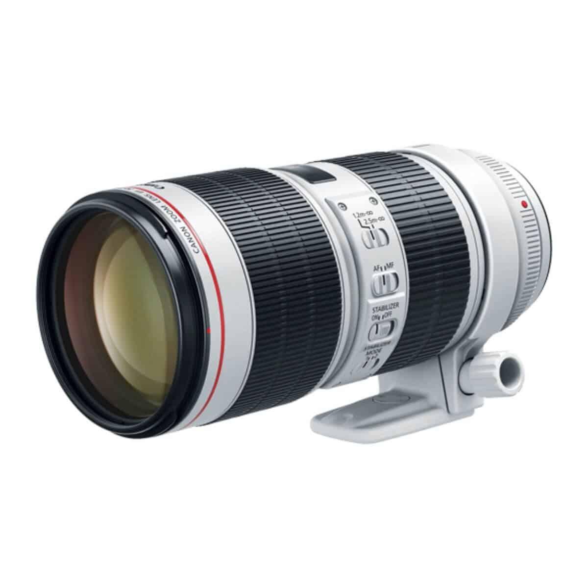 Canon 70-200mm f/2.8 lens.